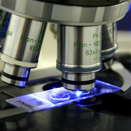 Life sciences picture - microscope